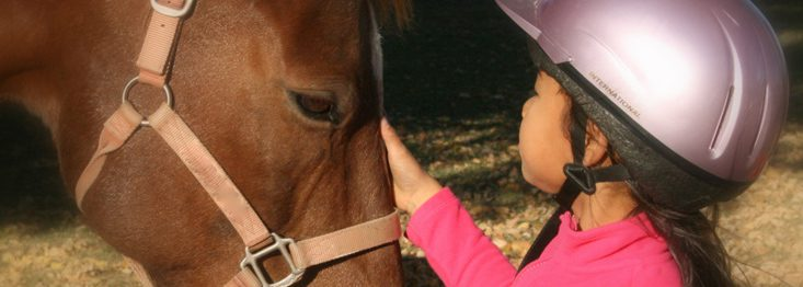 BraveHearts horse and young client