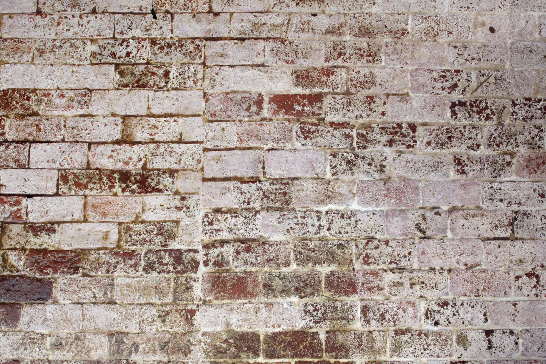 brick wall - Internet Safety Tips to Protect Your Information